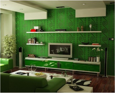 Green Living Room Ideas (15)