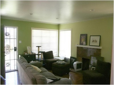 Green Living Room Ideas (11)