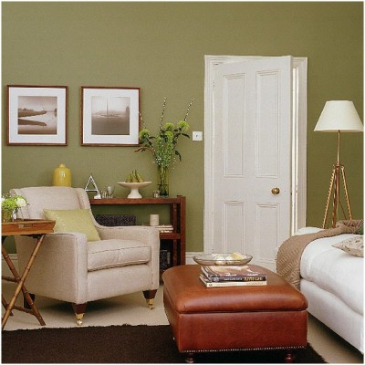 Green Living Room Ideas (2)