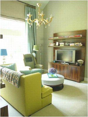 Green Living Room Ideas (1)