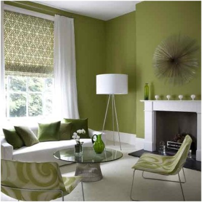 Green Living Room Ideas (27)