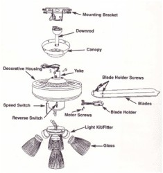 ceiling fan rotate anticlockwise