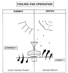 Ceiling Fan Rotation (12)