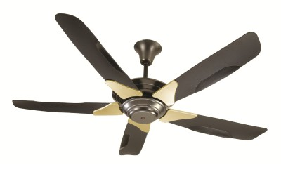 Ceiling Fan Rotation (7)