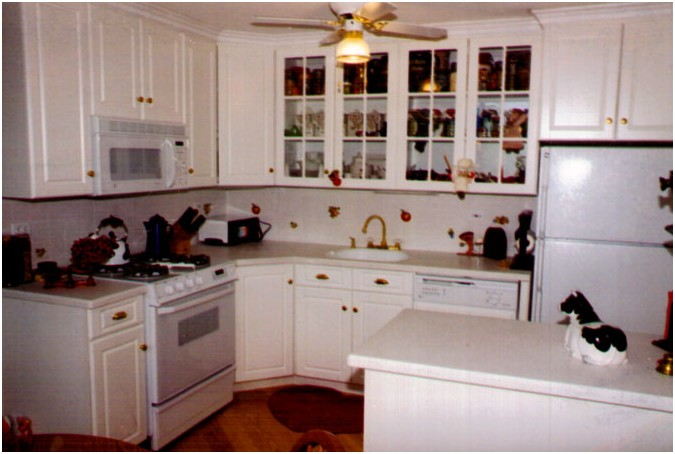 kitchen cabinets design edmonton