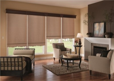 Custom Roller Shades Ideas (5)