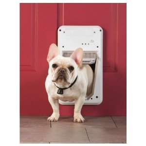 Dog door electronic PetSafe system