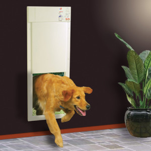 magnetic dog door for wall